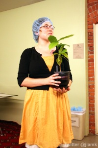 Tour guide and the Theobroma Cacao plant