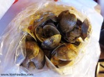 1lb of Clams