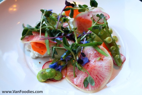 Local Spring Salad